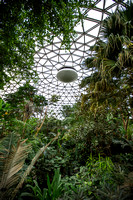 Bloedel Floral Conservatory